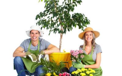 Приглашаем начинающих и опытных садоводов на практические занятия по самым актуальным темам.